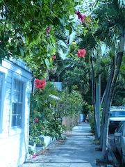 Key West street