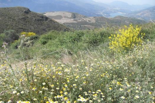 Valle del Río Izbor