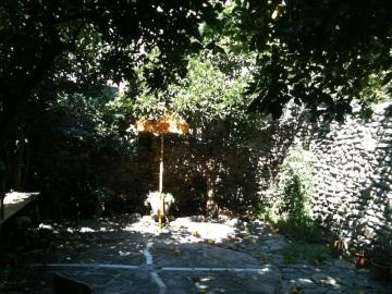 Ananda's mundo garden