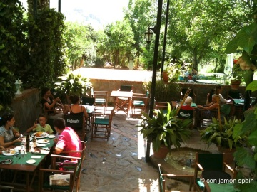 Flor de Limonero a hotel Taray