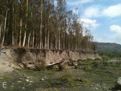 Crumbling river bank Orgiva