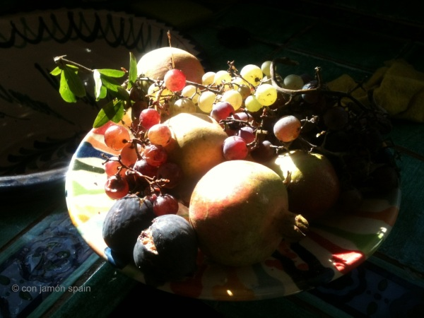 Fruit from our garden
