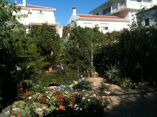 Orgiva garden centre