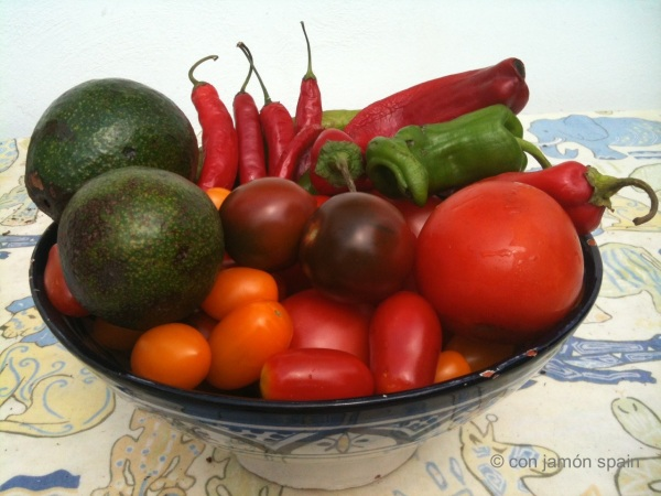 Vegetables from Orgiva market