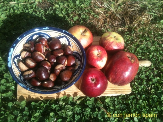 chestnuts and apples