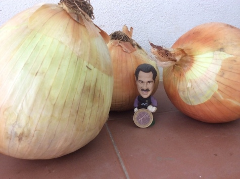 David Seaman with his onions
